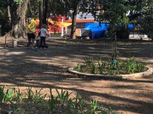Mutirão de limpeza na Praça Acibe